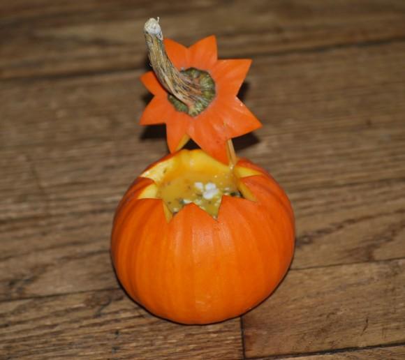 baby pumpkin soup